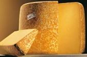Po stopách ozajstného syra