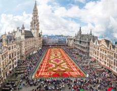 Koberec kvetín v Bruseli