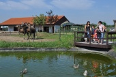 TOP výlety na južnej Morave