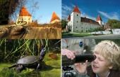 NP Dunajské luhy - Slovenské dni