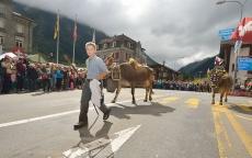 Oslava po švajčiarsky