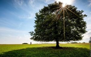 Udržateľné cestovanie 2021